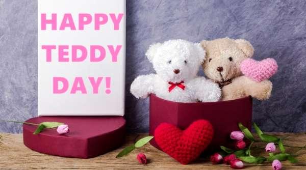 Happy teddy day image