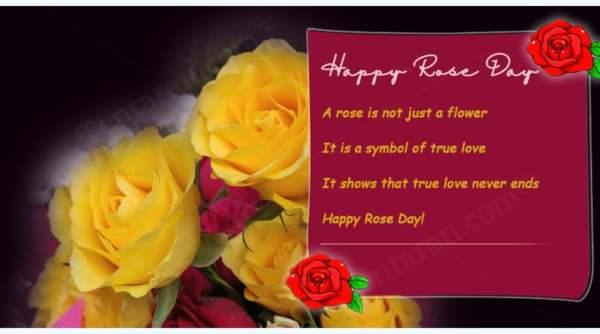 Rose day photo frame