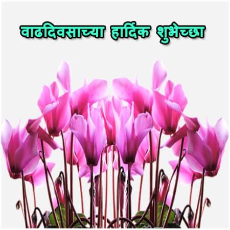 Vadhdivsachya Shubhechha Image