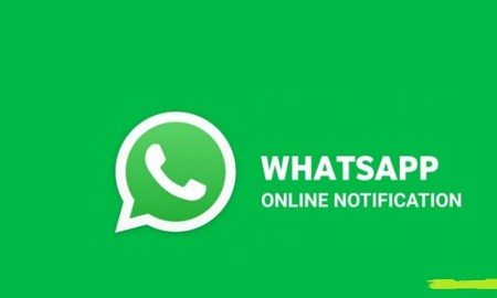 Hogatoga Online Offline Whatsapp Tracker