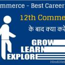 12th commerce ke bad