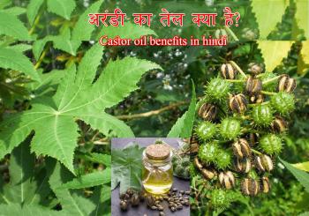 Castor oil in Hindi | Arandi ke tel | castor oil benefits in Hindi
