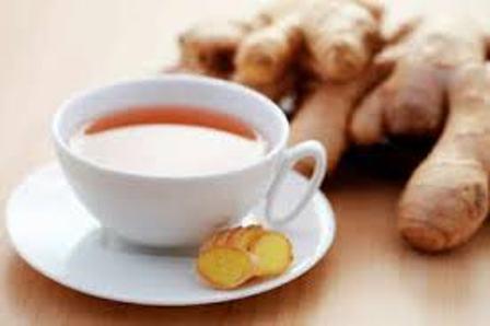 ginger tea pregnancy in hindi