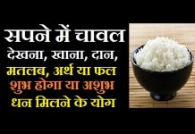 rice dream meaning in hindi