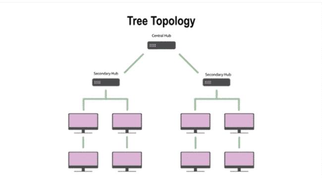 tree topology kya hai hindi