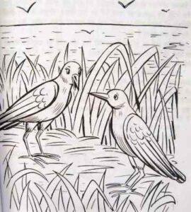 टिटिहरी और समुद्र New Birds Stories in Hindi