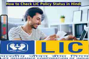 How to Check LIC Policy Status in Hindi