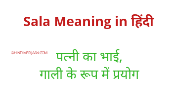 Meaning of Sala in Hindi