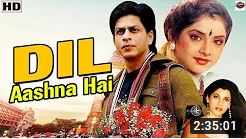 Dil Aashna Hai hindi full movie HD 1992
