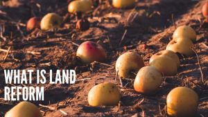 Read more about the article What is Land Reform, Meaning, Definition, History, Land Reform Program