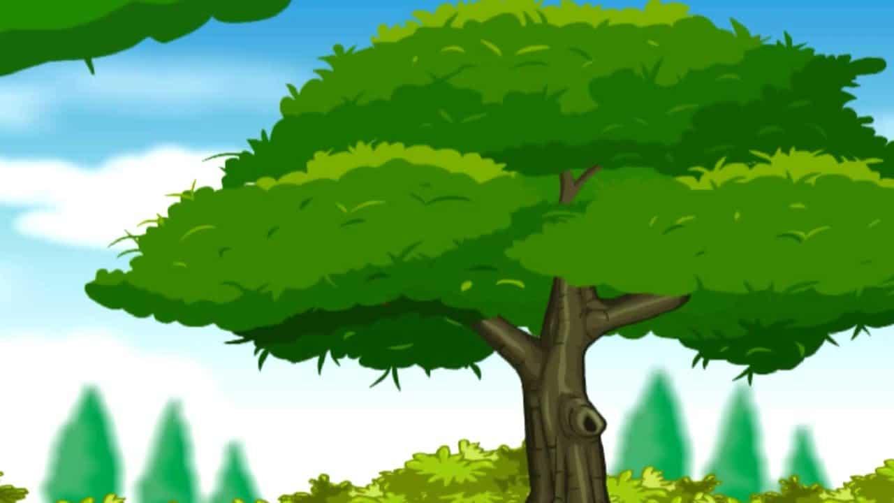 वृक्षारोपण के महत्व पर निबंध - पढ़े यहाँ Essay On Tree ...