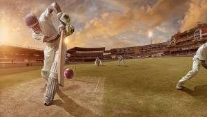 Cricket essay in Hindi
