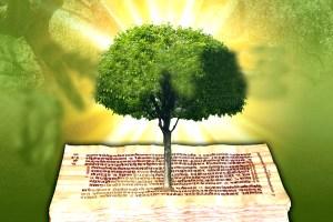 Read more about the article वेदों में पर्यावरण चिंतन