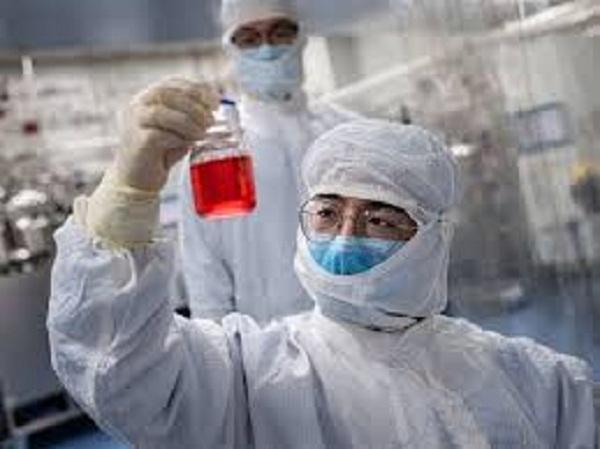 डब्ल्यूएचओ को है उम्मीद ,कोरोना वायरस की दवा का दो सप्ताह में आ जाएगा पहला रिजल्ट