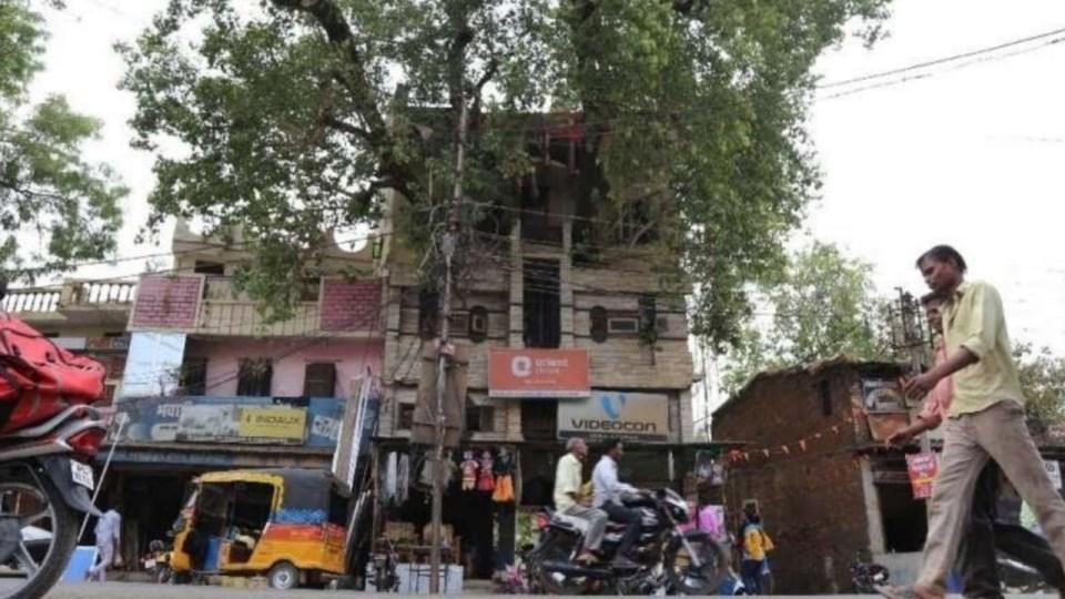 जबलपुर का वो परिवार जिसने बिना एक पेड़ काटे, बना लिया अपना घर