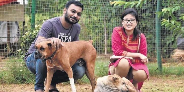 इस कपल ने अपनी शादी में गेस्ट के तौर पर बुलाया 500 जानवर, हुई तारीफ़