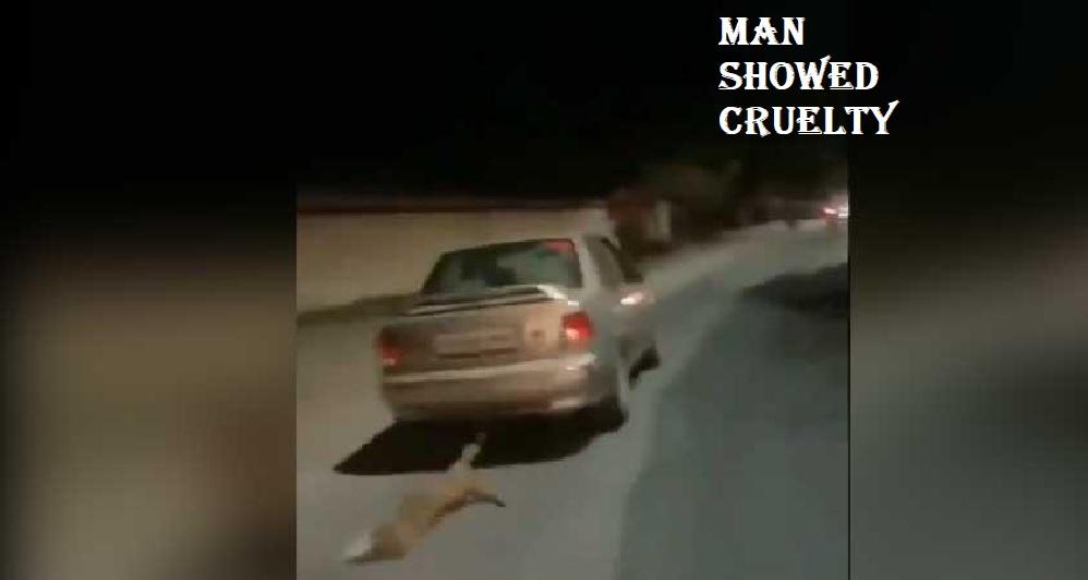 इस इंसान ने की सारी हदे पार, कुत्ते को गाड़ी के पीछे रस्सी से बांध सड़क पर दौड़ा दी गाड़ी, अपराधी यूसुफ हुआ गिरफ्तार