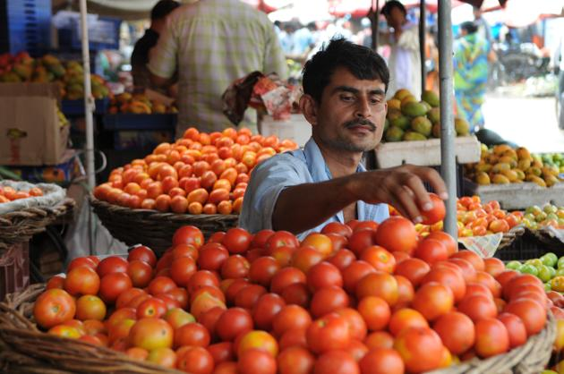 Tomato And Garlic Price: लहसुन की कीमतों में आई गिरावट, नवरात्री के बाद फिर बढ़ने वाली है कीमत, जानिए क्या है नये भाव