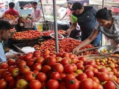 Garlic Price: टमाटर का रेट बढ़ा, लहसुन की कीमत 40 रुपये किलो घटी, जानिए क्या हैं नये भाव