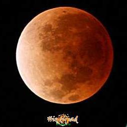 Hawaii Lunar eclipse picture