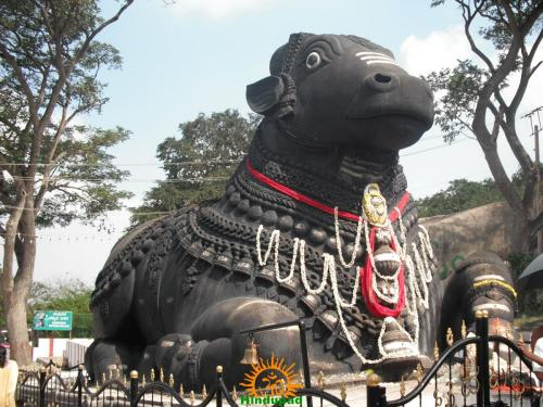 Front View of Huge Nandi on the Way to Chamundeshwari Temple in Mysore
