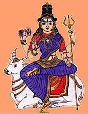 Goddess Maheshwari shakti of lord shiva