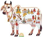 Gaumata - Cow Slaughter in India