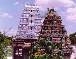 Karvetinagaram Temple