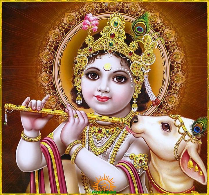 Janmashtami Puja Procedure with Mantras   Krishnashtami Pooja Vidhi - HinduPad