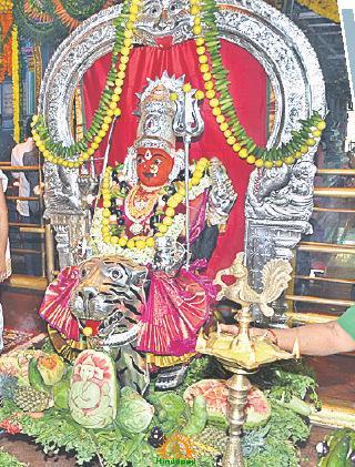 Peddamma Temple Shakambari Utsavams