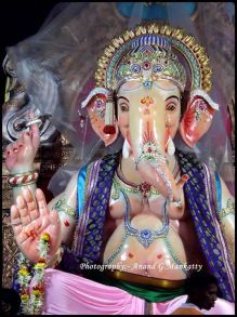 Dongri Cha Raja 2014 4 no-watermark