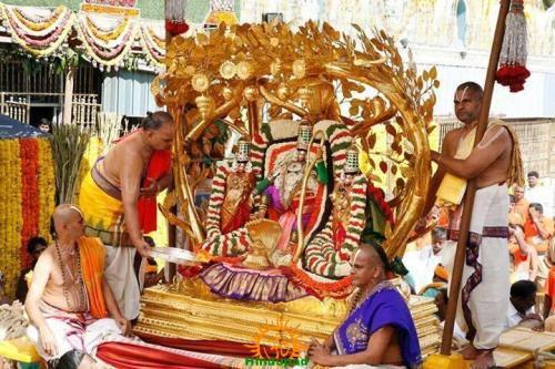 3 Kalpavriksha Vahana Seva TTD Brahmotsavam