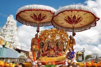 9 Kalpavriksha Vahana Seva TTD Brahmotsavam