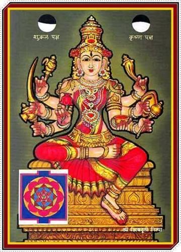 ShivaDuti Nitya