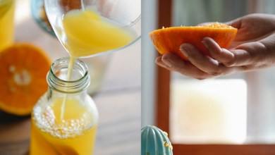 Study to help Kinnow fruit juice industry