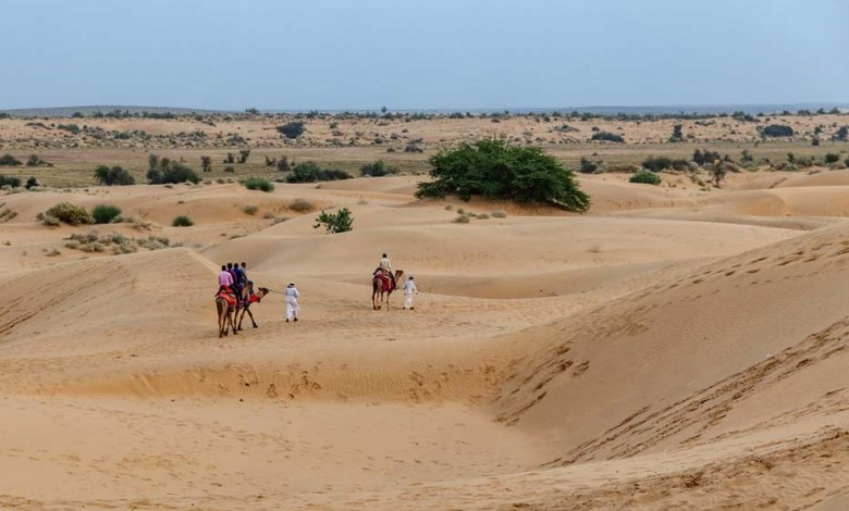 'DESIGNS' to conserve and restore Thar desert