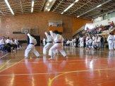 Hinode_karate_kazincbarcika_2014_001079