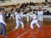 Hinode_karate_kazincbarcika_2014_001101
