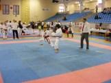 Hinode_Karate_Danok_2014_28