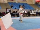 Hinode_Karate_Danok_2014_40