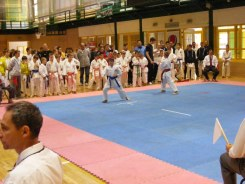 Hinode_IpponShobu_karate_2014_11