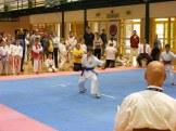 Hinode_IpponShobu_karate_2014_13
