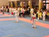 Hinode_karate_fujinaga_2014_007