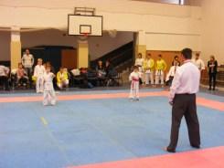 Hinode_karate_fujinaga_2014_010