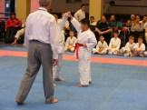 Hinode_karate_fujinaga_2014_037