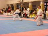 Hinode_karate_fujinaga_2014_039