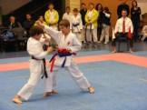 Hinode_karate_fujinaga_2014_062