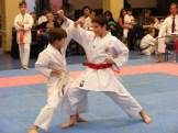 Hinode_karate_fujinaga_2014_092