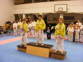 Hinode_karate_fujinaga_2014_117