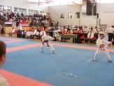 hinode_karate_diakolimpia_2015_15